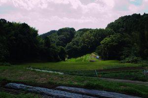 「茨木駅前マルシェ」茨木市忍頂寺河野さんの畑近くの谷